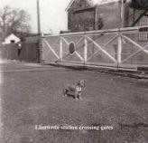 Llanwrda Station Crossing Gates