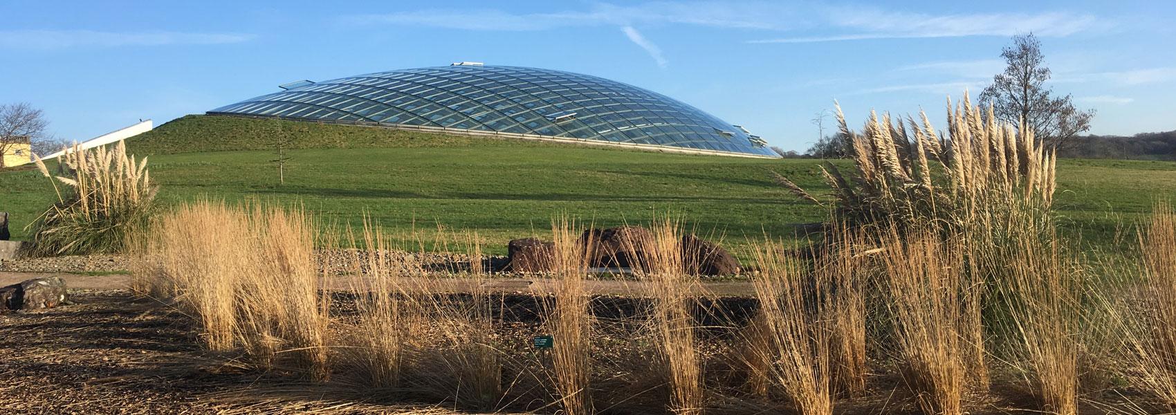 Botanic-gardens-glasshouse